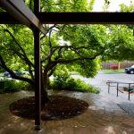 Magnolia Public Library